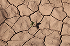 "November 2020 - New publication ""A multidisciplinary drought catalogue for southwestern Germany"""